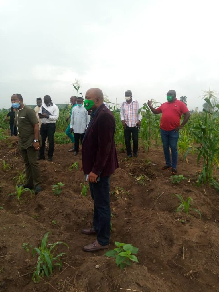 Members of Nigeria Union of Journalist, Akwa Ibom State Council led by State Chairman, Comrade Amos Etuk inspect Uran LGA's farm project.