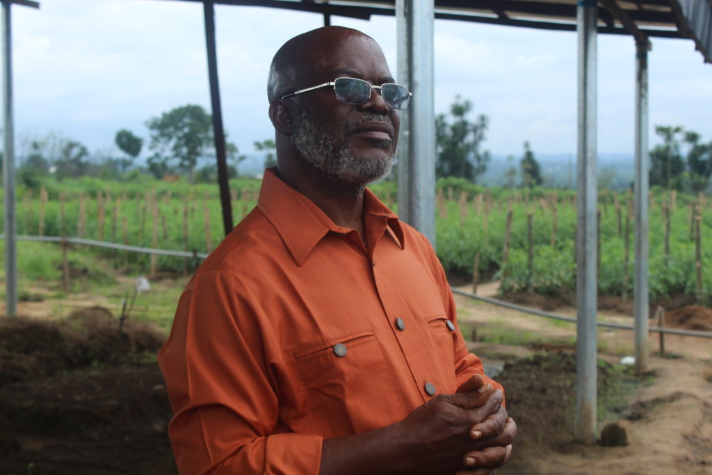 Our correspondent Anthony Esin reports that the seven hectares tomato farm which currently employs about 57 workers from Mbiakong and Ifiayong communities in Uruan Local Government Area is situated near Ibom Hotel and Golf Resort along Nwaniba Road.